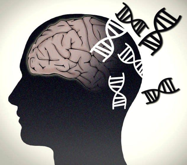 alzheimer genetic doctor Dinu